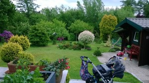 My in-laws' amazing garden